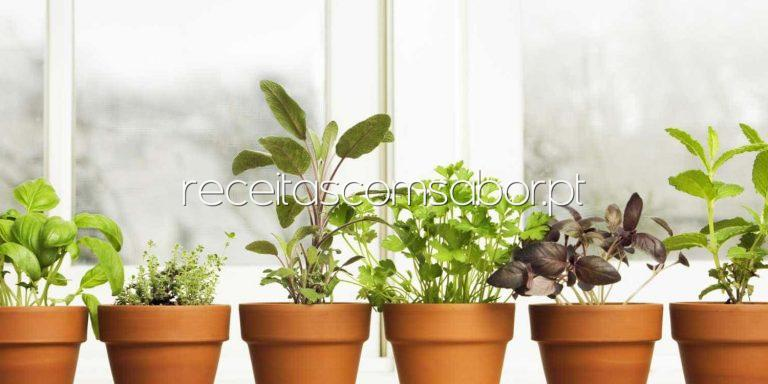 Como ter uma horta de temperos em casa