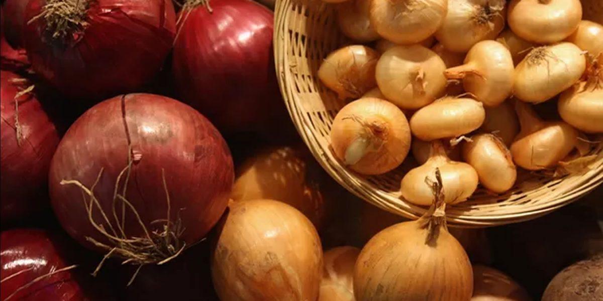cebolas - tempero natural